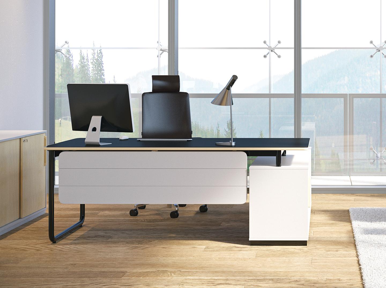 Idée Bureau D Angle comment aménager et décorer un bureau de direction ?